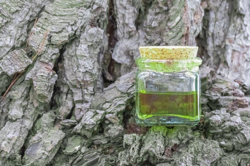Bouteille en verre avec le chapeau de liège avec de l'huile vert-jaune de nectar image libre de droits