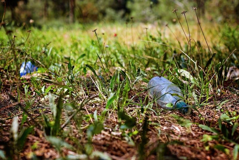 Bouteille en verre dans une pollution environnementale de forêt de pin Photo modifiée la tonalité et élégante image stock