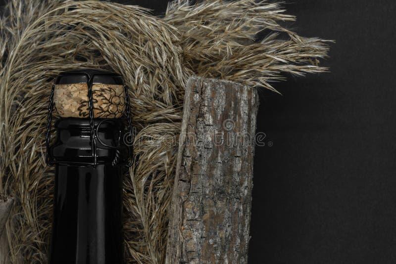 Bouteille en verre de noir de Champagne placée dans l'écorce d'arbre avec le penchant sur le fond noir photographie stock libre de droits