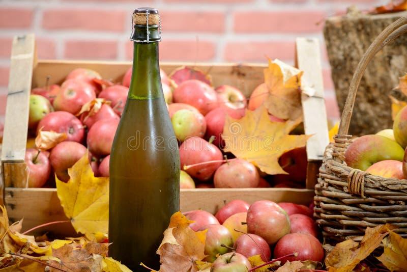 Bouteille et verre de cidre avec des pommes images libres de droits