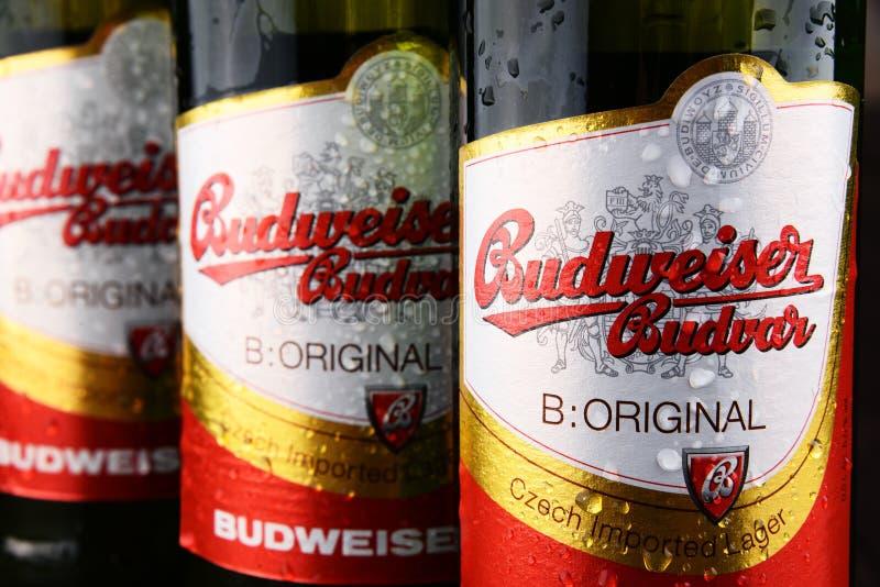 Bouteilles de bière de Budweiser Budvar photos libres de droits