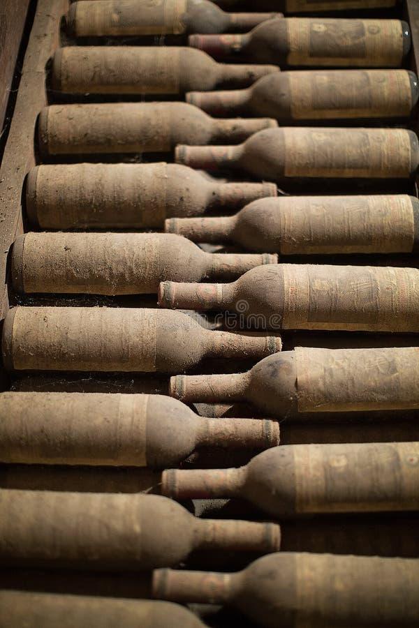 Bouteilles de vin dans la cave photos stock