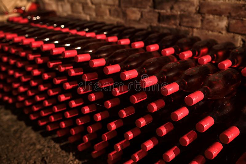 Bouteilles de vin dans la cave photos libres de droits