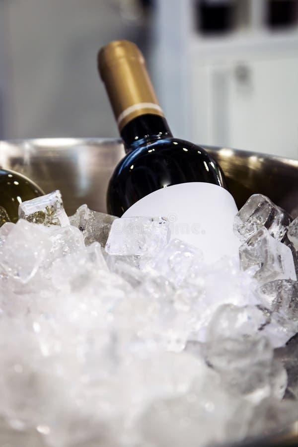 Bouteilles de vin dans la glace à l'échantillon photographie stock