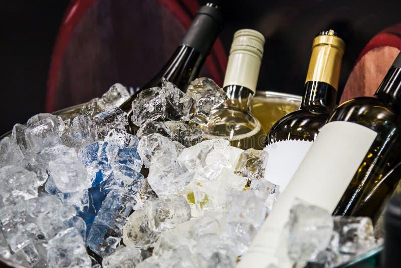 Bouteilles de vin dans la glace à l'échantillon photo stock