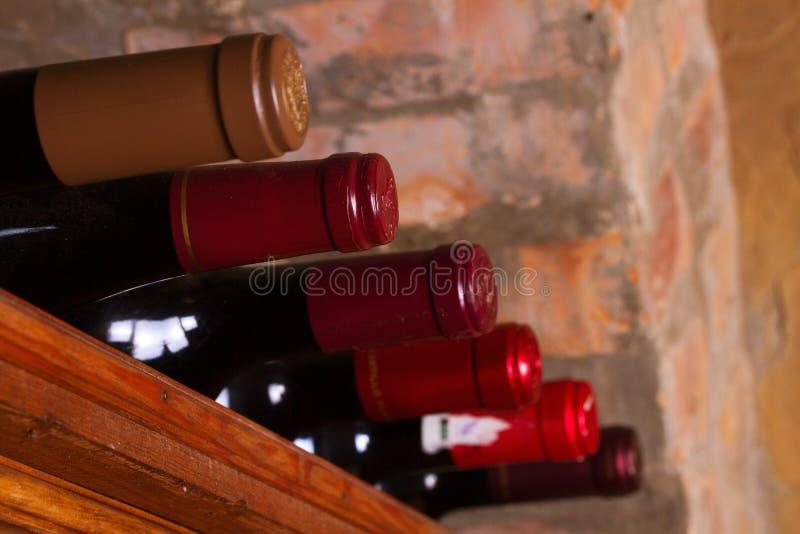 Bouteilles de vin sur les étagères en bois dans la cave photographie stock