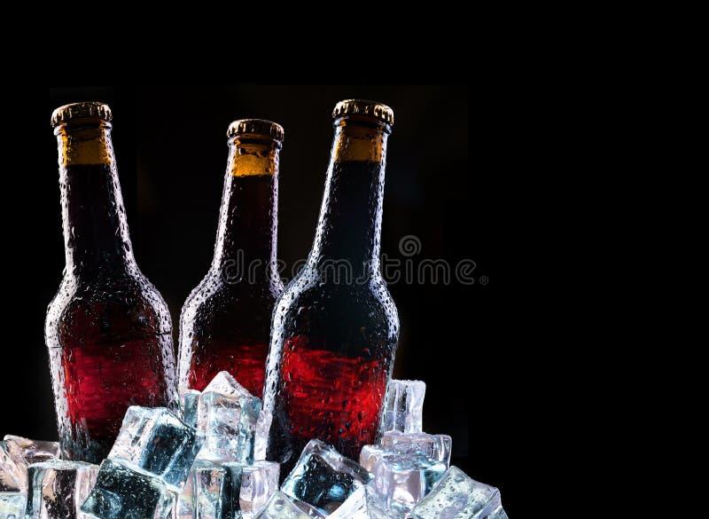 Bouteilles froides et bière fraîche image libre de droits