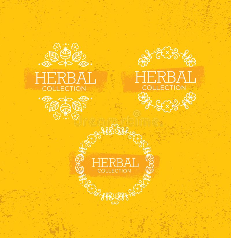 Boutique de fines herbes de collection Conception créative de produit de beauté organique fait main Illustration élégante sur le  illustration stock