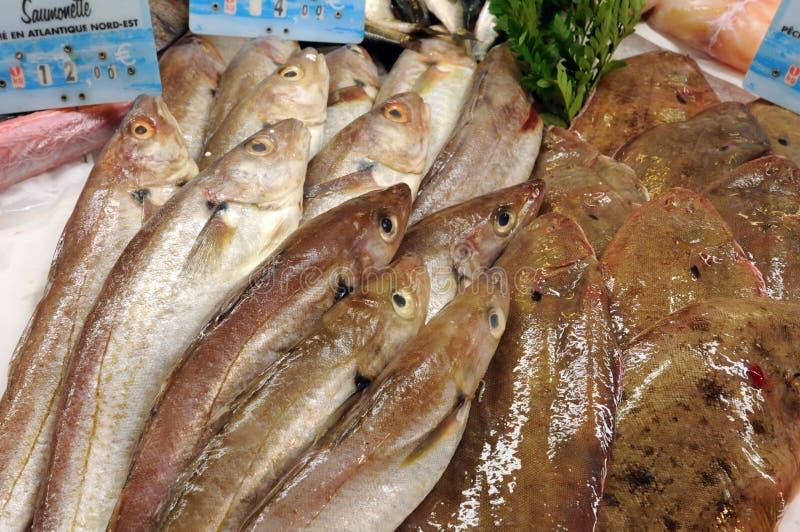 Boutique de poissons dans la ville de Honfleur image stock
