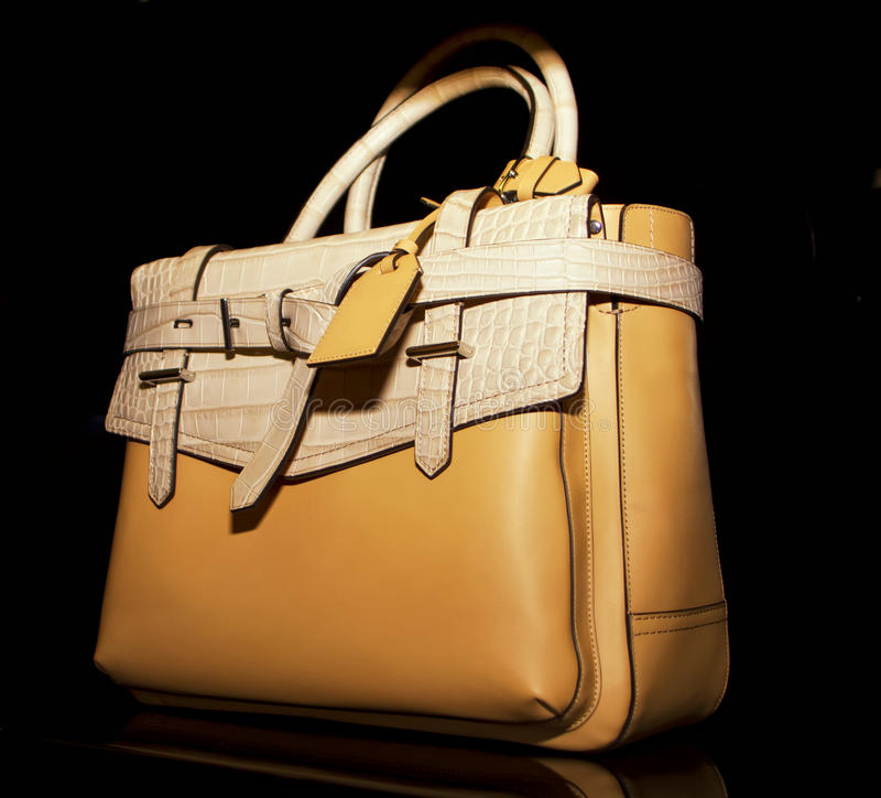 Boutique di cuoio alla moda della borsa delle donne fotografia stock