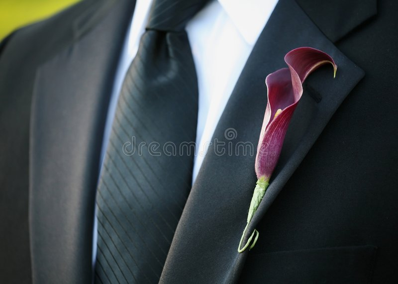 Boutonniere imagens de stock royalty free