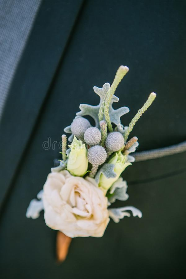 Boutonniere na lapel fornal obrazy royalty free