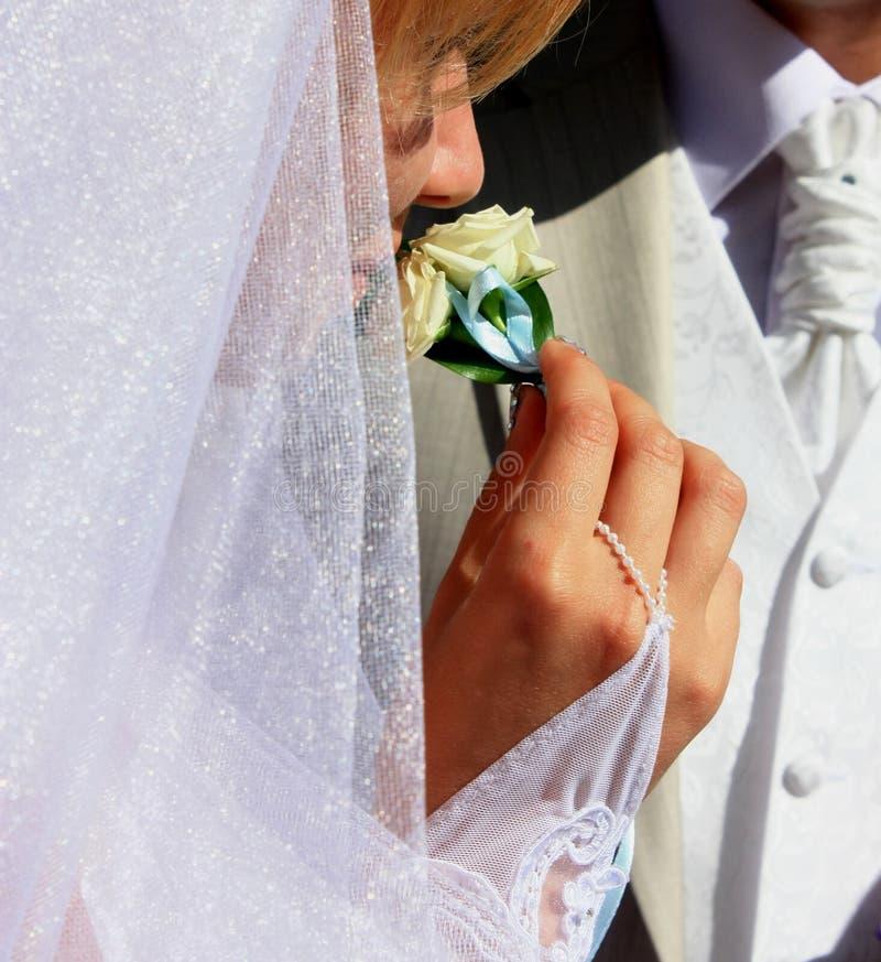 Boutonniere sentant de mariée photographie stock libre de droits