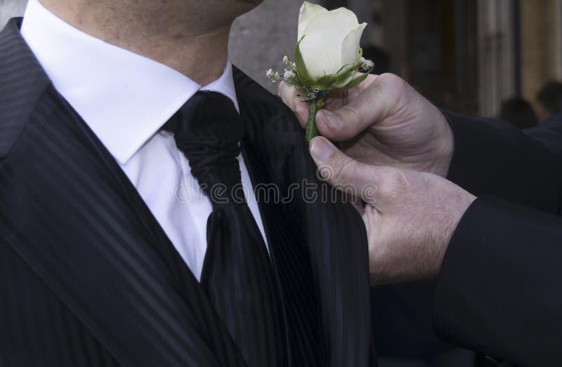 Boutonniere w buttonhole fornal fotografia royalty free