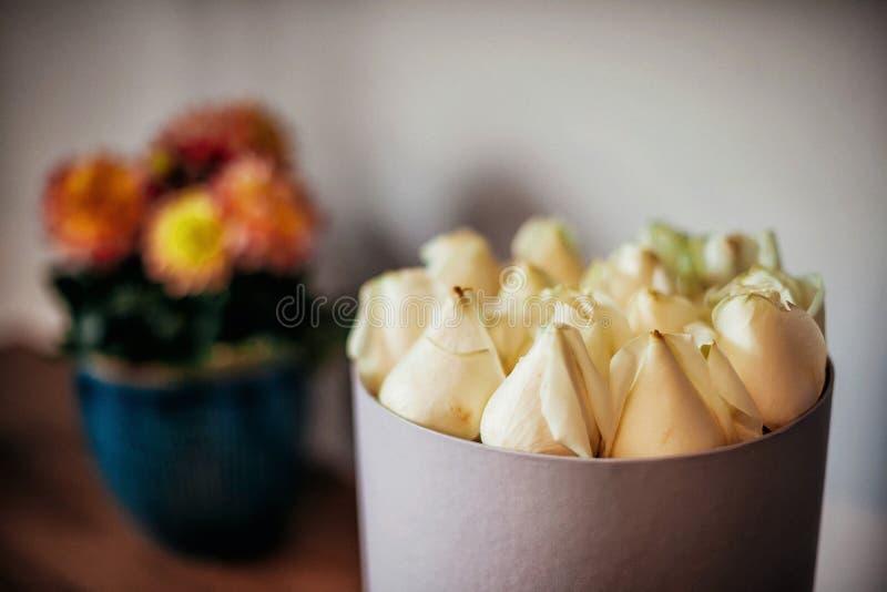 Boutons de roses dans une boîte photos libres de droits