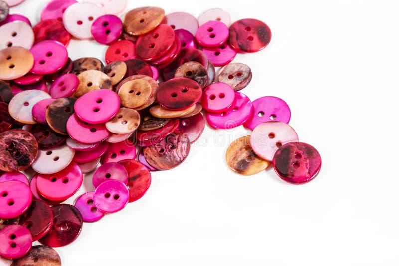 Boutons roses et rouges images libres de droits