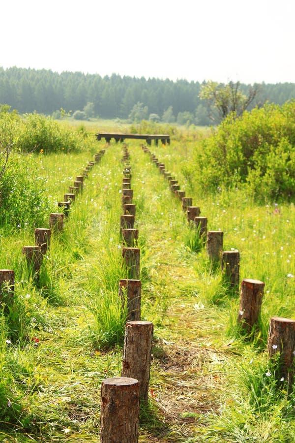 Bouw houten bruggen royalty-vrije stock fotografie