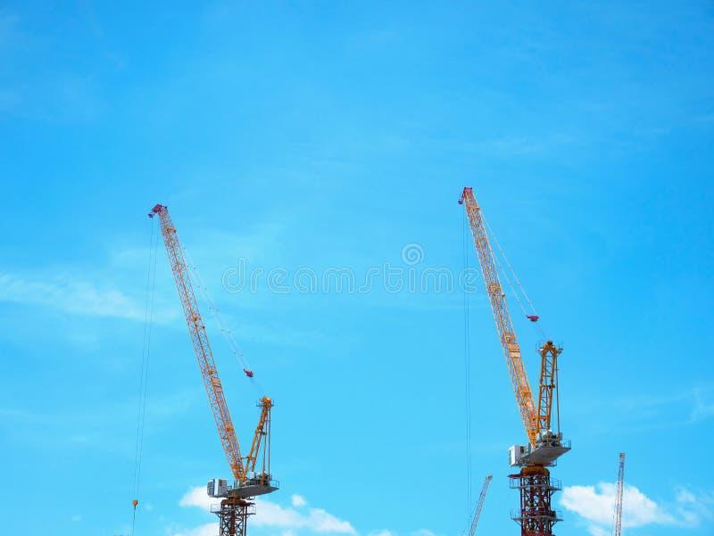 Bouwkranen met Boomstructuur het Benadrukken tegen Blauwe Hemel royalty-vrije stock afbeelding
