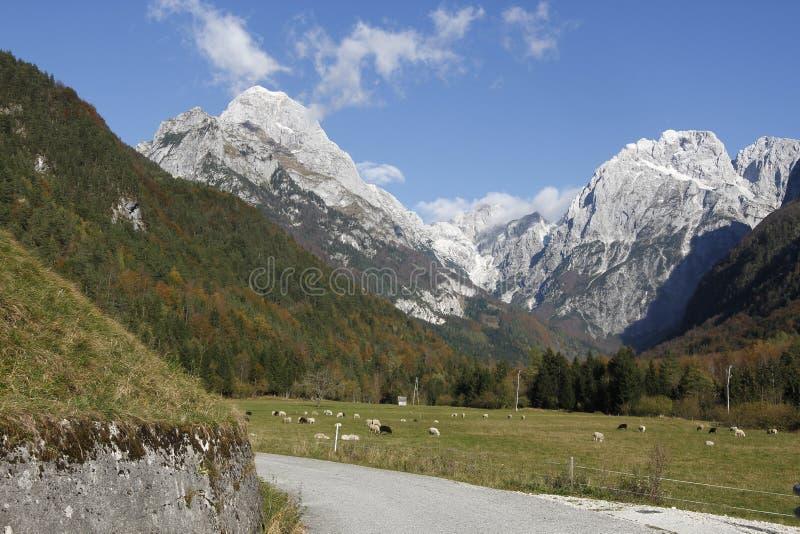 Bovec Slovenië royalty-vrije stock foto