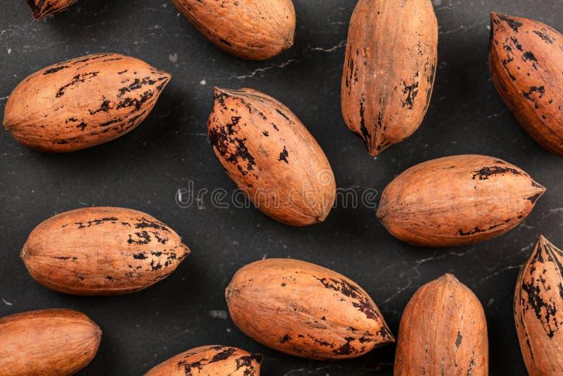 Boven geschotene, gehele pecannootnoten in shell op zwarte raad royalty-vrije stock fotografie
