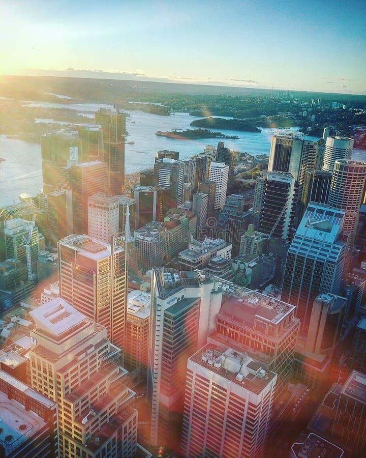 Bovenkant van het oogtoren van Sydney stock foto's