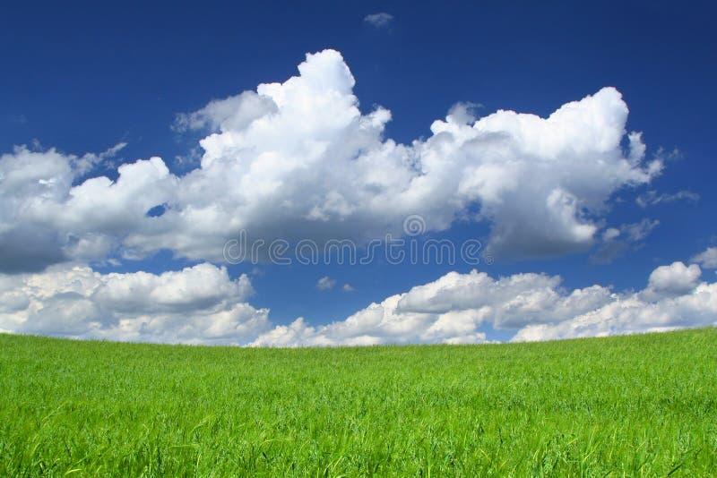 Bovenkant van heuvel stock fotografie