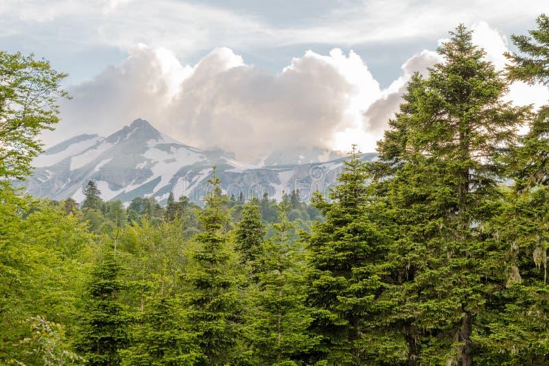 Bovenkanten van de Bergen van de Kaukasus in wolken stock foto's