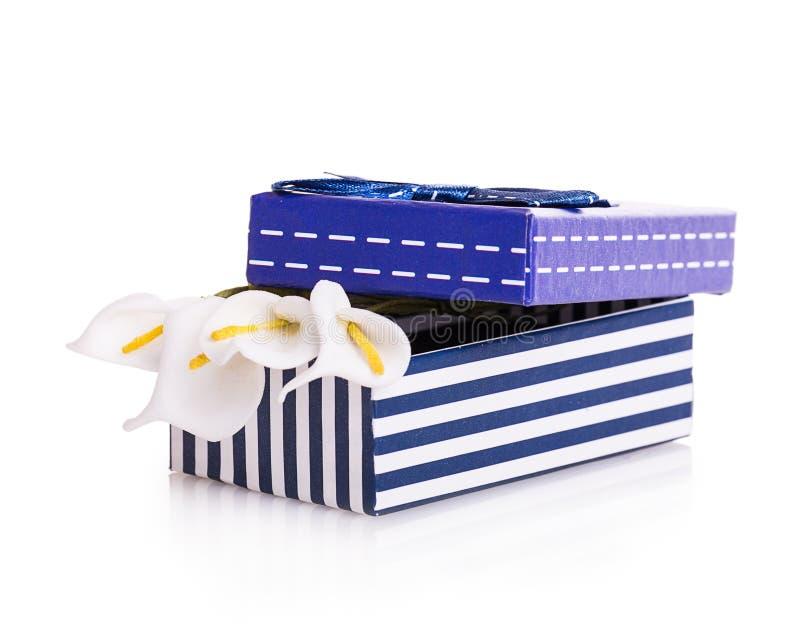 Bow gift box. Isolated on white background royalty free stock photos