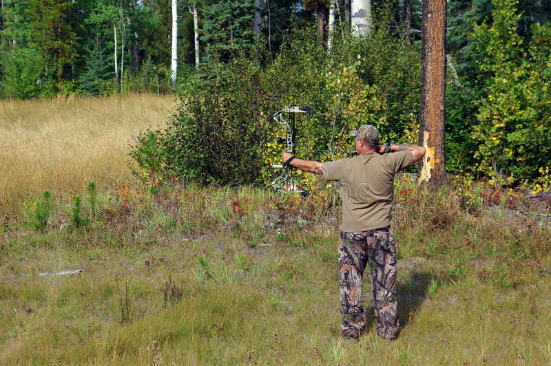 Bow Hunter stock image