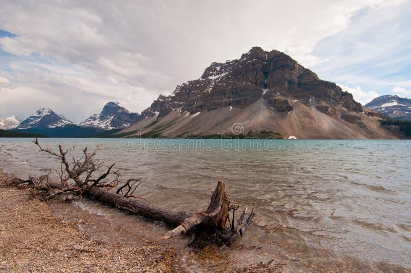 Download Bow Lake stock photo. Image of view, greenery, panorama - 22192972