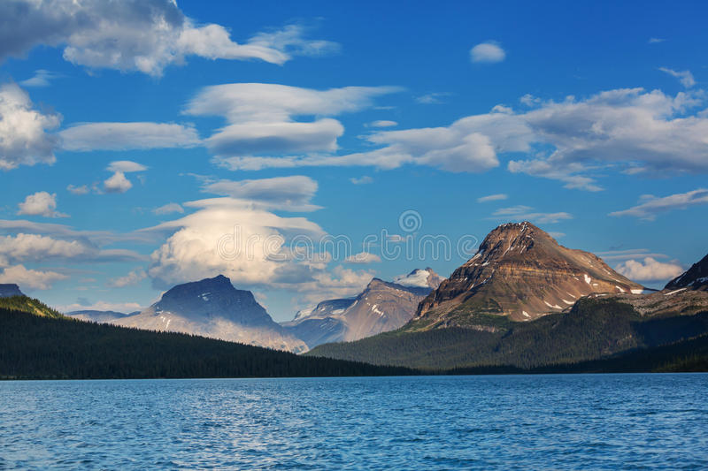 Bow lake. Icefields Parkway, Banff National Park, Canada stock image