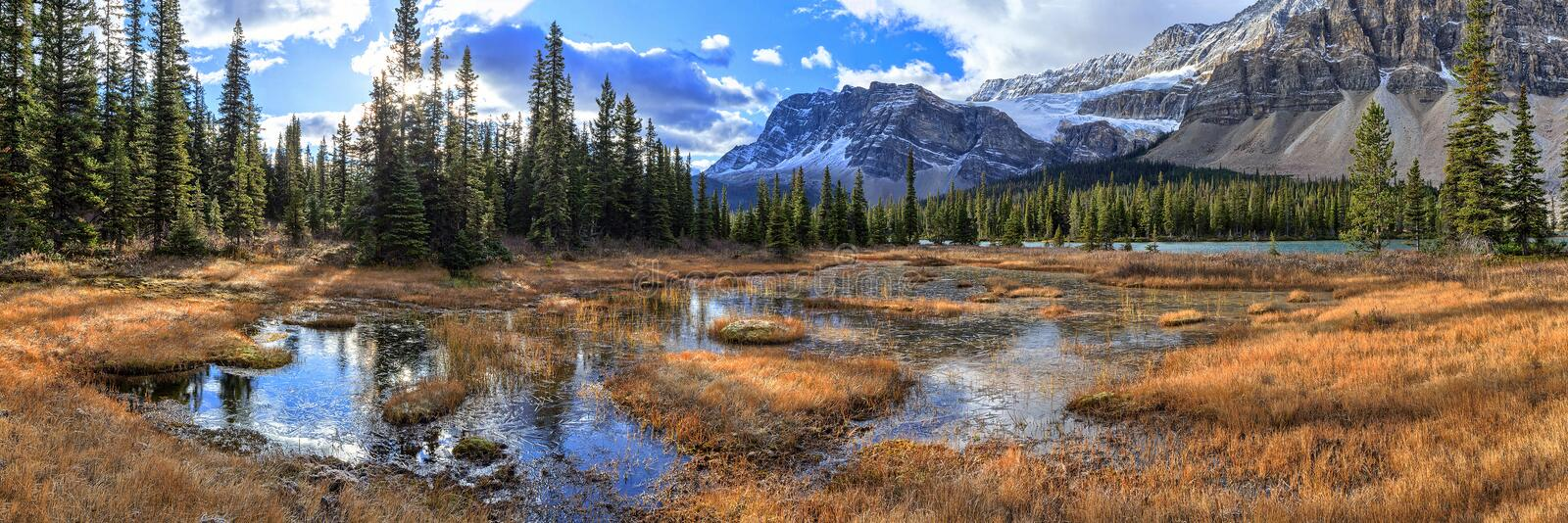 Bow Lake. Is a small lake in western Alberta, Canada royalty free stock photo