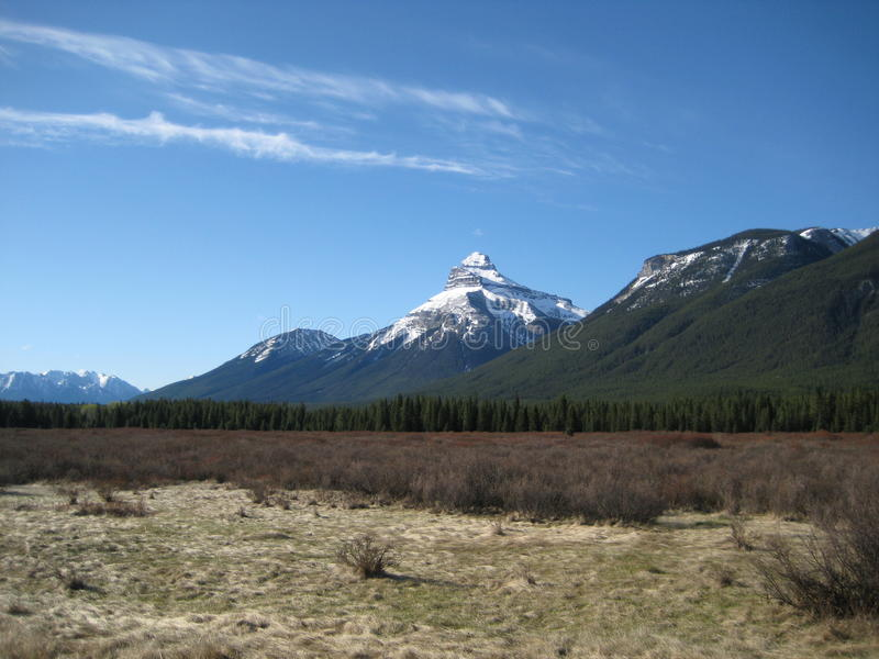 Bow River Valley In Banff National Park stock photos