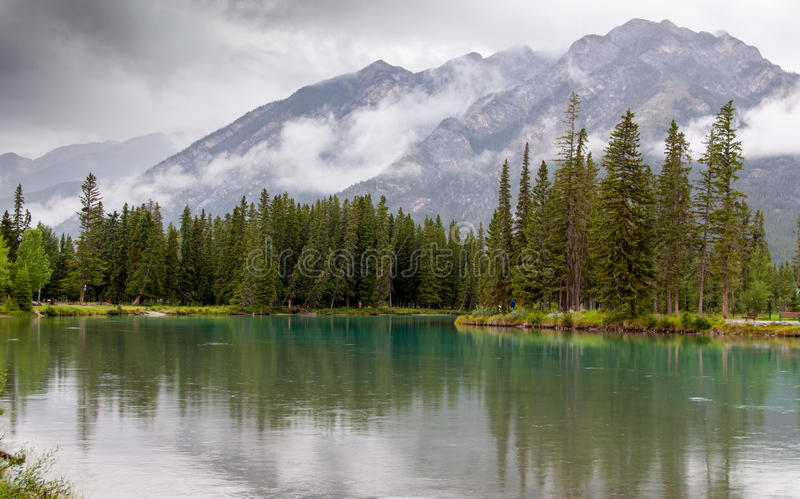Bow River royalty free stock photo