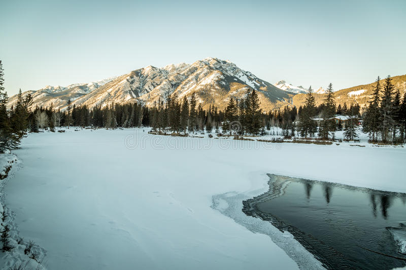 Bow River royalty free stock photography