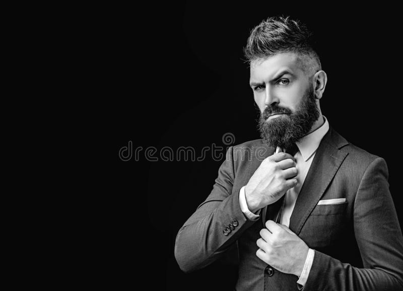 Bow tie. Bearded man in dark grey suit. Man in classic suit, shirt and tie. Rich man model. Luxury classic suits, vogue. Bow tie. Bearded man in dark grey suit royalty free stock image