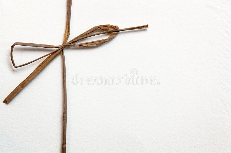 Bow on White Paper stock photography