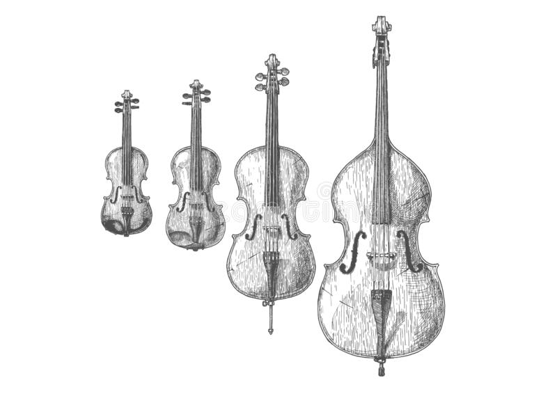 Bowed string instruments. Vector hand drawn illustration of Bowed string instruments in vintage engraved style. Violin, Viola, Violoncello Cello and Contrabass royalty free illustration