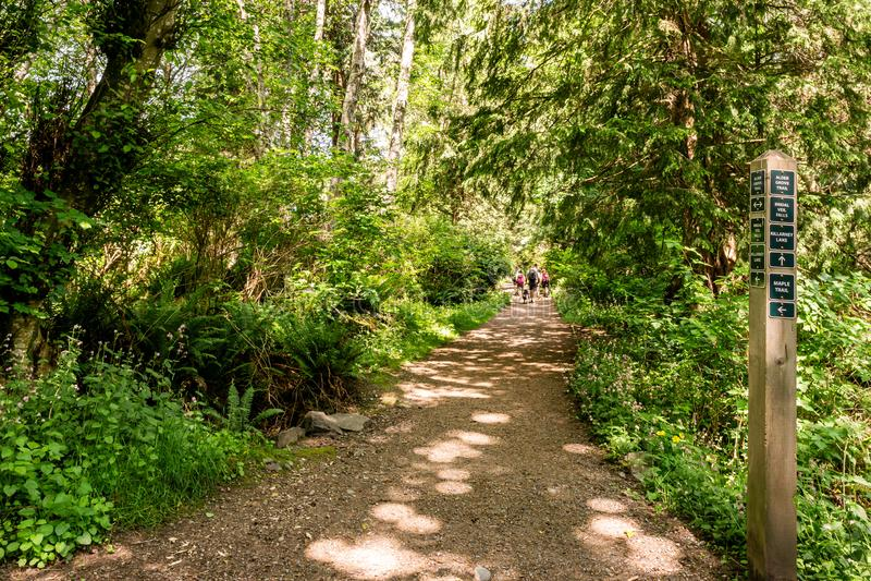 BOWEN-INSEL, KANADA - 2. Juni 2019: einfacher Wanderweg im Park nahe Killarney See Britisch-Kolumbien lizenzfreie stockbilder