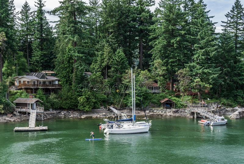 BOWEN ISLAND, CANADA - JUNE 2, 2019: houses on the shore and yachts on the water. Bay, home, board, pier, dock, people, green, forest, park, outdoors, sport stock image