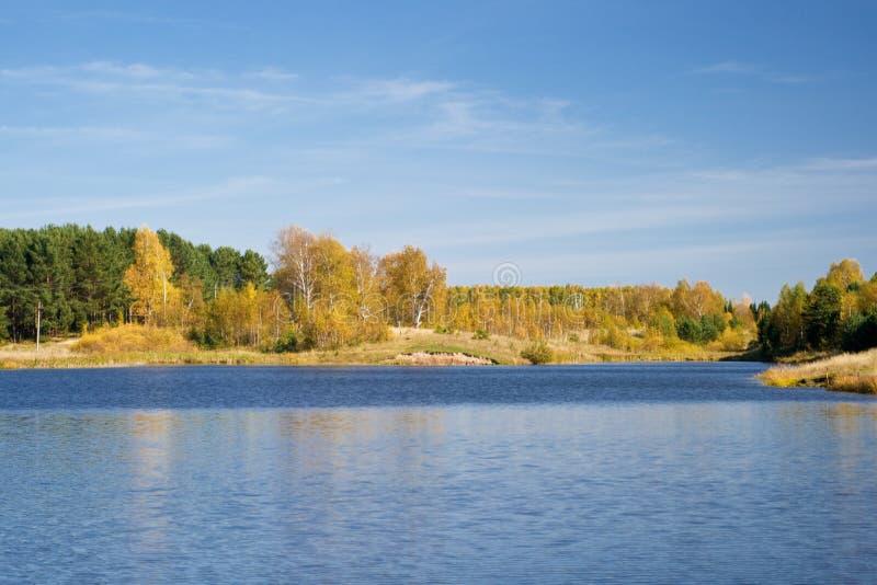 bower осени ponds сценарное стоковое фото rf