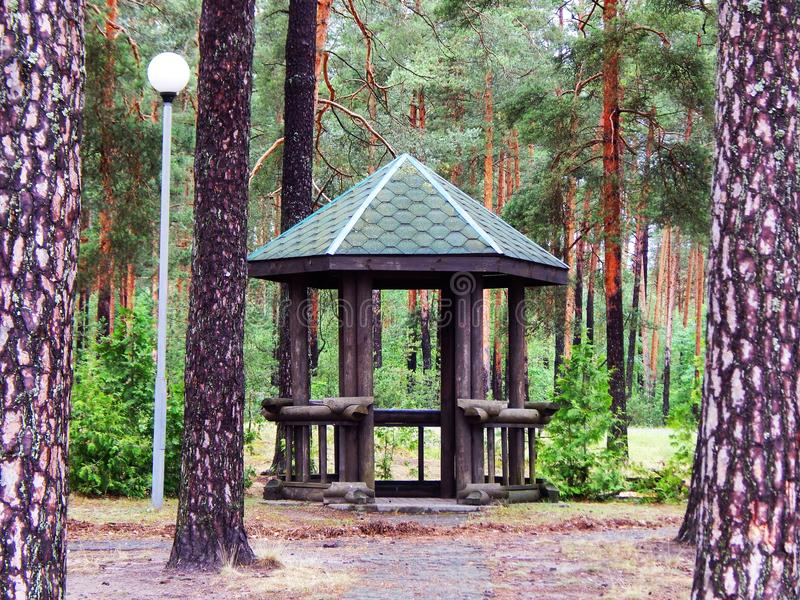 The bower in the forest. The view of bower and trees. After rain royalty free stock image