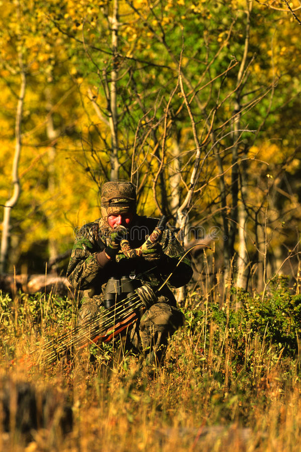 Download Bowhunter Bugling Elk stock photo. Image of calling, arrows - 15623076