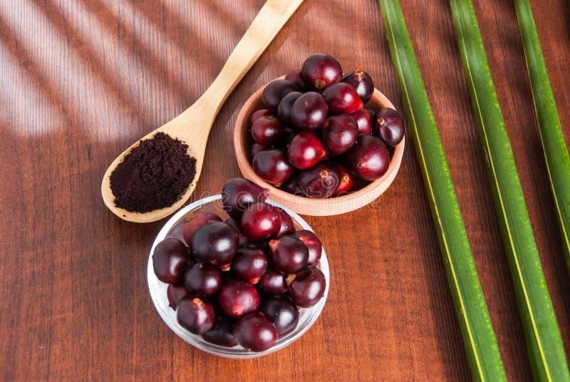 The amazon acai fruit. Euterpe oleracea. Bowl of acai powder and fresh berries on dark wooden table stock image