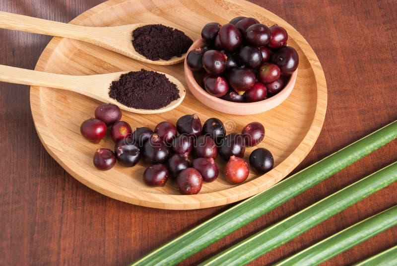 The amazon acai fruit. Euterpe oleracea. Bowl of acai powder and fresh berries on dark wooden table stock photo