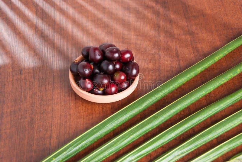 The amazon acai fruit. Euterpe oleracea. Bowl of acai powder and fresh berries on dark wooden table stock photos