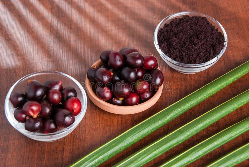 The amazon acai fruit. Euterpe oleracea. Bowl of acai powder and fresh berries on dark wooden table royalty free stock image