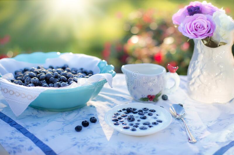 Bowl of Blue Berries on a Table in a Garden on a Sunny Day stock image
