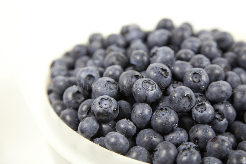 Download Bowl of Blueberries stock image. Image of field, image - 10533345