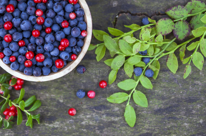 Bowl of blueberries and cranberries. With a couple of green plant leaves on wooden background stock photos
